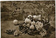ABUNDANCE - A. FASSBENDER (pictorialist): Vintage Photogravure ed.755/1000