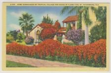 USA postcard - Home Surrounded by Foliage, St Petersburg, Florida (A36)
