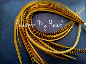 """Feather Hair Extension 9 - 12""""  Long (23-30cm) Grizzly/ Solid 10 Pc Butterscotch"""