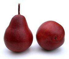 Artificial Red Bartlett Pear Fake Pear