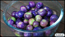 Purple Morado Tomatillo! PERFECT For COOKING! Combined S/H! SEE OUR STORE!