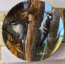 Edwin Knowles Encyclopedia Britannica Birds Plate Downy Woodpecker 1987