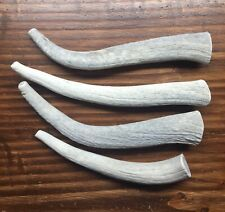 1 Pound Bargain Bone Elk Antler Dog Chews-M/L Dogs-Free Shipping