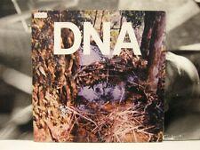 "DNA ( ARTO LINDSAY ) A TASTE OF DNA 12"" EP EX+ NO WAVE USA AMERICAN CLAVE 1003EP"