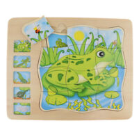 4 Layer Puzzle Frog Kindergarten Toddlers Toy Kids Learn Game
