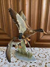 Hutschenreuther Porzellanfigur Enten 39 Cm