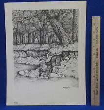 Signed Print Picture Mark Enblom Numbered 43 of 100 Otter on River Bank Nature