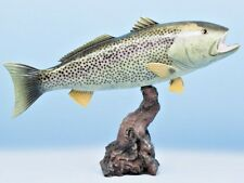 "Taxidermy Weak Fish Stunning Trophy 20"" Replica Mount"