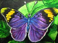 Painting Purple Butterfly Insect Flowers Green Leaf Nature ACEO Art