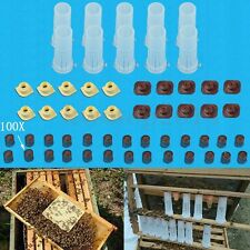 Complete Queen Rearing Cupkit System Bee Catcher Cage Beekeeping+100 Cell Cups