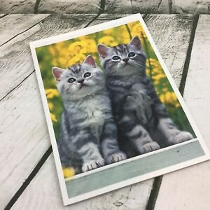 Mead Purrs & Grrrs Kitty Cat Kitten Notebook Pad Stationary Decorated Sheets