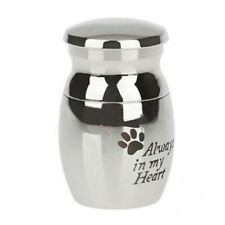 Mini Urn For Human / Pet Ashes -Cremation Memorial Keepsake Memory Silver Pretty