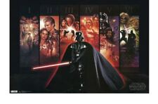 Star Wars Darth Vader Series Mural Poster 24x36 - Home Decor Wall Art Print New