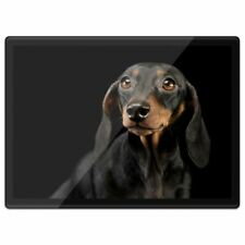 Quickmat Plastic Placemat A3 - Black & Tan Dachshund Puppy Dog  #21438