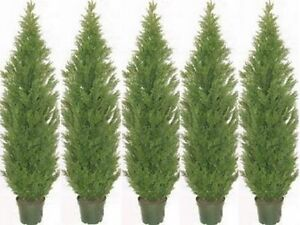 "5 ARTIFICIAL CEDAR PINE OUTDOOR TOPIARY TREE 5' BUSH CYPRESS 60"" DECK UV RATED"