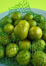 Fresh Whole Fruit Key Limes in bag 16 oz (brand subject to market availability)