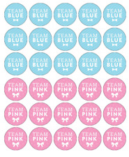 Baby Shower Gender Reveal x 30 Cupcake Toppers Edible Wafer Paper Fairy Cake