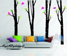 4 Large Bird Tree Vinyl Wall Decal  decor sticker Home Art Stickers Kids Nursery