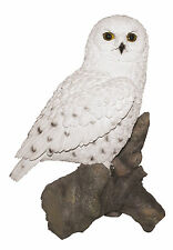 Vivid Arts - REAL LIFE BIRDS - Snowy Owl