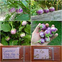 Eggplant - Aubergine ''Lavender Frog Egg'' ~30 Top Quality Seeds - EXTRA RARE