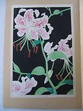 S. Kato Japanese Woodblock Print - Flower oban - Shinmei Kato?