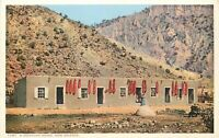 DB Postcard New Mexico J033 A Mexican Home NM Chiles Ristras Drying Fred Harvey