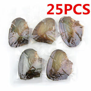 25pcs Individually Wrapped Oysters with Natural Pearl Holiday Gift