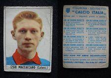 ***CALCIO ITALIA 1965/66*** ED. BAGGIOLI - MACCACARO (CATANZARO) N.258