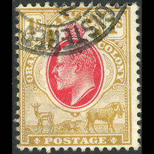 SOUTH AFRICA Orange Free State 1903-04 1s Scarlet & Bistre SG 146 Used. (AW394C)