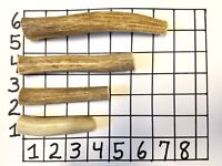 Lot of 4 Antler Dog Chews - You Pick the Size - FREE SHIPPING ( Dog Chew Treat )