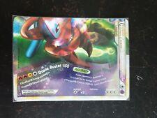Pokemon Rayquaza & Deoxys Legend Bottom Half 90/90