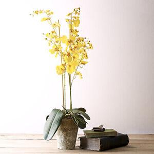 Large White & Yellow Artificial Potted Orchid Arrangement Ceramic Pot 70cm UK