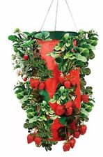 Strawberry Planter Vegetable Herb Upside Down Hanging Topsy Turvy NEW