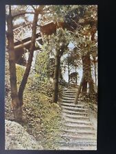 Dorset BOURNEMOUTH Boscombe Gardens Rustic Bridge & Step c1910 by Photochrom
