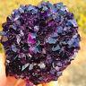 190g  Natural Amethyst Crystal Quartz Cluster  Healing Specimen Reiki Mineral