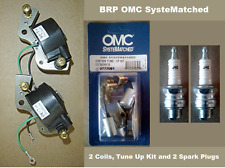 BRP Johnson Evinrude 18 20 25 28 33 40 HP Tune Up Kit 2 Coils 2 Spark Plugs J4C