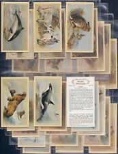 PLAYERS GRANDEE-FULL SET- BRITISH MAMMALS (GROUP PLC T30 CARDS) - EXC+++