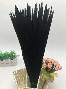 Beautiful10-100pcs natural pheasant tail feathers 10-22 inches / 25-55 cm