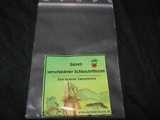 Fleischfressende Pflanzen 30 Sarracenia Samen Mix! - Schlauchpflanze