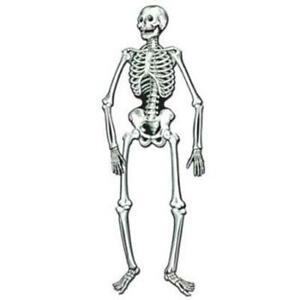 EXCEART 36pcs White Plastic Bones Halloween Bones Halloween Skeleton Bones Decoration for Caveman Theme Costume Supplies