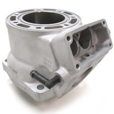 Arctic Cat Factory Replated Cylinder 1999 ZR 440 Sno Pro New - 3005-537