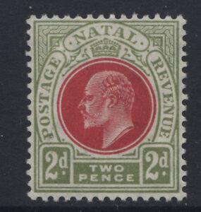 NATAL - 1904/08 WMK.MCA 2d RED & OLIVE-GREEN MINT  SG.149  (REF.A20)
