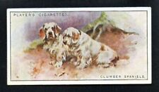 Clumber Spaniels 1925 John Player Cigarettes Tobacco Dogs # Ex-Exmt Nice Corners
