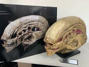 "26"" Sideshow Coolprops Alien Resurrection Giger's Alien Newborn Life-Size Head"