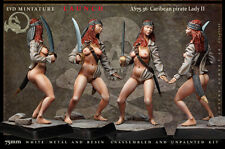 Caribean pirate Lady II 75mm 1 Figur El Viejo Dragon Miniaturas Pin Up AS75.36