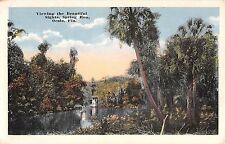 c.1920 Steamer Spring Run Ocala FL post card