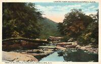 Vintage Postcard 1920's Famous Kaaterskill Clove Palenville Catskill Mts. NY