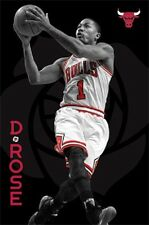 (LAMINATED) D. ROSE NBA CHICAGO BULLS POSTER (57x87cm)  PICTURE PRINT NEW ART