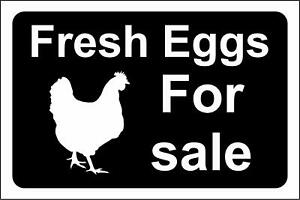 Fresh eggs for sale metal park safety sign