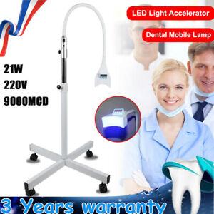 blanchiment Lampe de dentaire mobile LED Bleaching Light Dentaire Accelera 21W